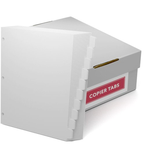 Double Reverse 1/10th Cut 110lb Plain Paper Copier Tabs 3 Hole (B11010DR3HP) - $161.19 Image 1
