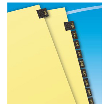 Avery Jan-Dec Gold Reinforced Preprinted Black Leather Tab (AVE-11351) - $2.85 Image 1