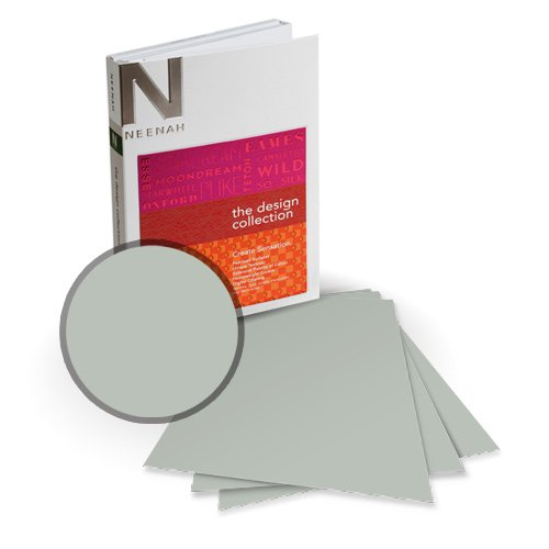 "Neenah Paper Esse Smooth Pearlized Silver 12"" x 12"" 105lb Card Stock - 6 Sheets (NESSCPS420-F) Image 1"