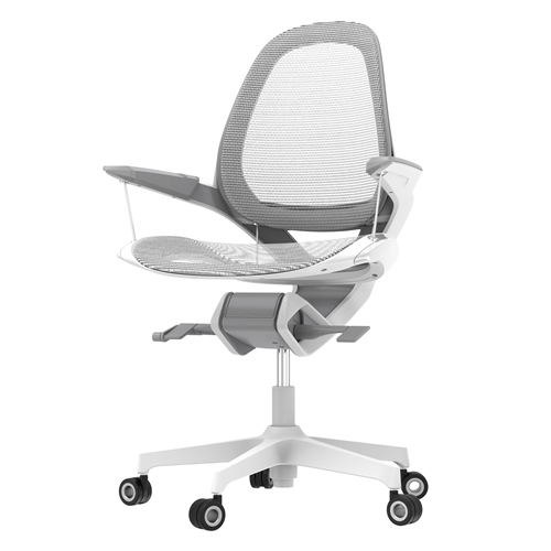 Office Chair Posture Support Image 1