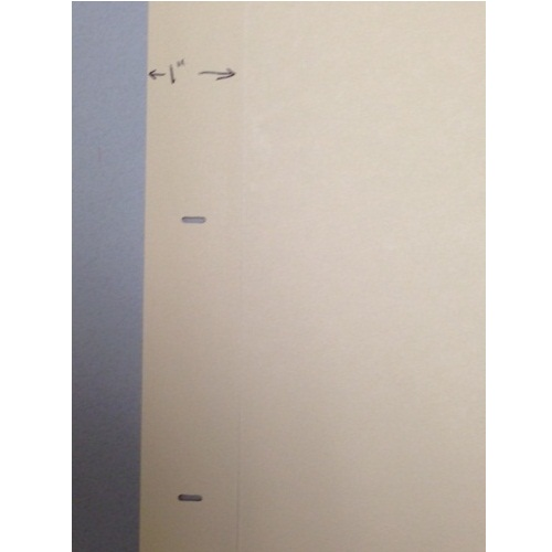 Indent 110lb Reinforced Ivory Fileback Index with 2 Slots (IND110RIFI2S) Image 1