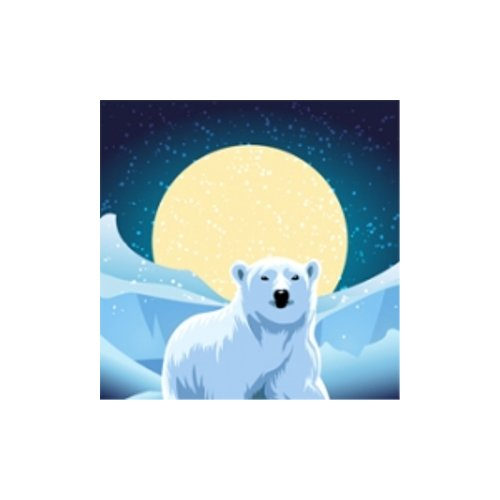 "Drytac Polar Transit Matte 3.2mil 54"" x 150' Removable Self-Adhesive Printable Vinyl (PTM54150) - $248.47 Image 1"