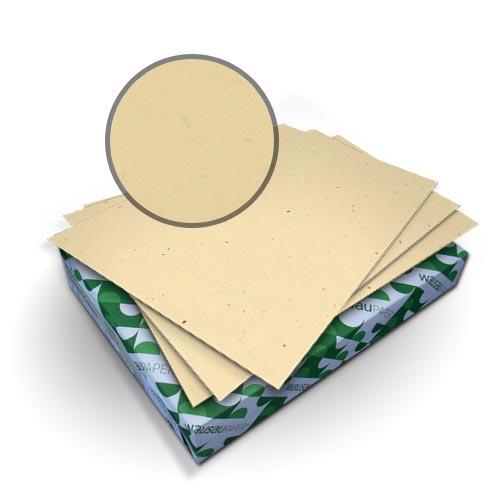 "Neenah Paper Royal Fiber Balsa 9"" x 11"" 80lb Smooth Cover - 50pk (MYRFC9X11BA), Neenah Paper brand Image 1"