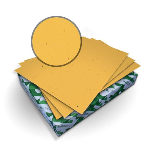Neenah Paper Royal Fiber Sunflower 80lb Smooth Covers (MYRFCSF), Covers Image 1