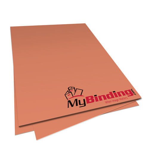 Salmon 20lb Unpunched Binding Paper - 500 Sheets (PPP20DMSA85X11-11) Image 1